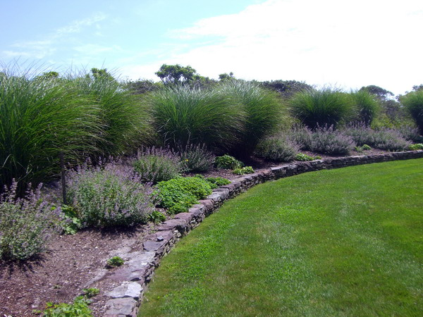 Beautiful landscaping with stone wall lines the back and side yard